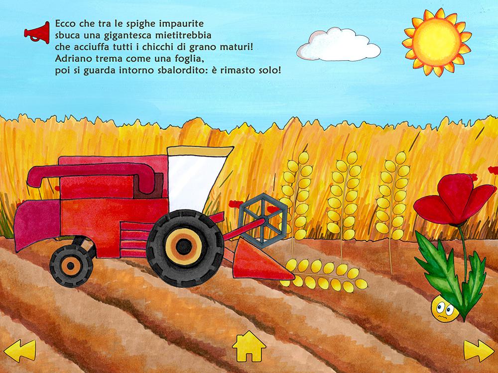 Adriano il chicco di grano