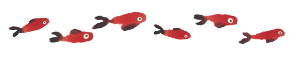 pesci 1000px